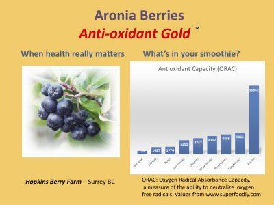 Aronia_Berries_ORAC2